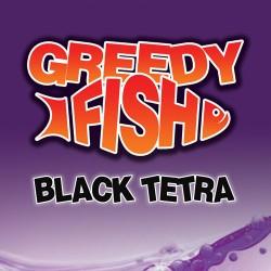 Black Tetra